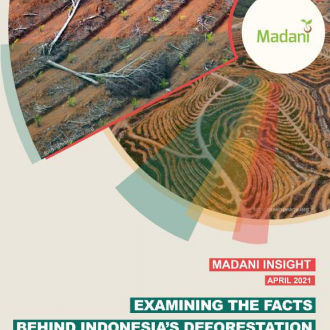 Examining The Fact Behind Indonesia's Deforestation 2019-2020